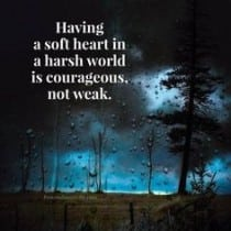 Harsh World Quote
