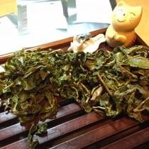 Taiwanese Tea Tasting