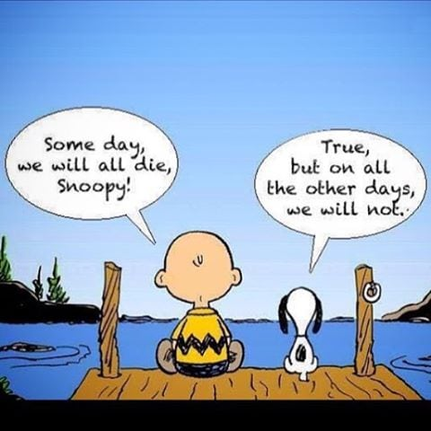 Zen Snoopy and Charlie Brown